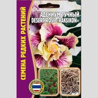 Адениум тучный DesertRose Raksikon - Семена Тут