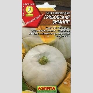 Тыква Грибовская зимняя крупноплодная - Семена Тут
