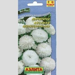 Маргаритка Авелина, крупноцветковая - Семена Тут