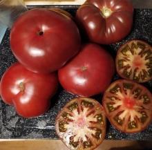 Томат Шоколадная Глыба (Реликтовые томаты) - Семена Тут