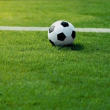 Газонная трава Смесь для спортивной площадки SPORT (1кг) - Семена Тут