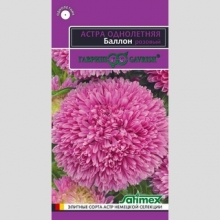 Астра Баллон розовый - Семена Тут