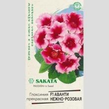 Глоксиния Аванти нежно-розовая F1 - Семена Тут