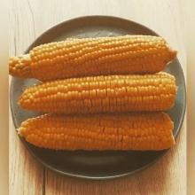 Кукуруза Лопай-Лопай (попкорн) - Семена Тут