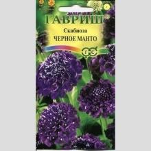Скабиоза пурпурная Чёрное манто - Семена Тут