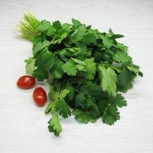 Кориандр Ткемали - Семена Тут