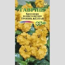 Кроссандра Тропик желтая - Семена Тут
