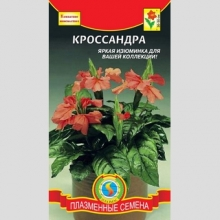 Кроссандра - Семена Тут