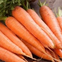 Морковь Детская Сладкая (УД) (на ленте) 8м - Семена Тут