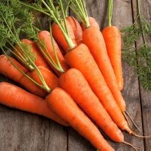 Морковь Детская сладость - Семена Тут