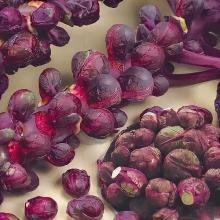 Капуста Брюссельская Рубиновые Бусы - Семена Тут