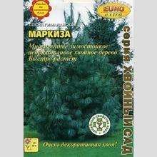 Сосна Маркиза гималайская - Семена Тут