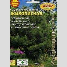 Сосна Живописная густоцветная (большой пакет) - Семена Тут