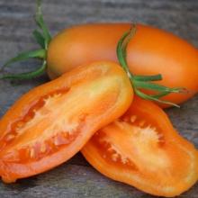 Томат Банан оранжевый - Семена Тут