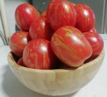 Томат Пасхальные Яйца