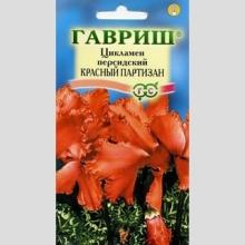 Цикламен Красный партизан персидский - Семена Тут