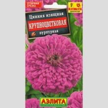 Цинния Крупноцветковая пурпурная - Семена Тут