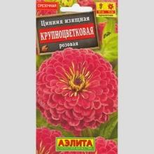Цинния Крупноцветковая розовая - Семена Тут