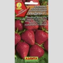 Земляника Грандиан F1 ремонтантная крупноплодная - Семена Тут