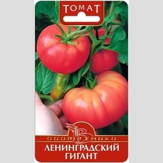 Томат Ленинградский Гигант - Семена Тут